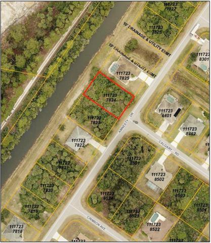 Amnesty Drive, North Port, FL 34288 (MLS #C7405003) :: Team Pepka