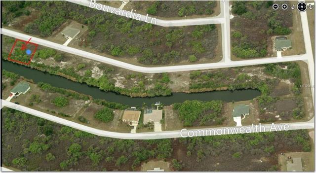 13886 Allamanda Circle, Port Charlotte, FL 33981 (MLS #C7405254) :: The Lockhart Team