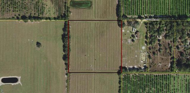 Timber Drive, Arcadia, FL 34266 (MLS #C7405255) :: G World Properties