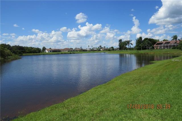 1357 Razorbill Lane, Punta Gorda, FL 33983 (MLS #C7405410) :: The Duncan Duo Team