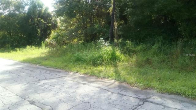 Dufferin Avenue, North Port, FL 34286 (MLS #C7405505) :: G World Properties
