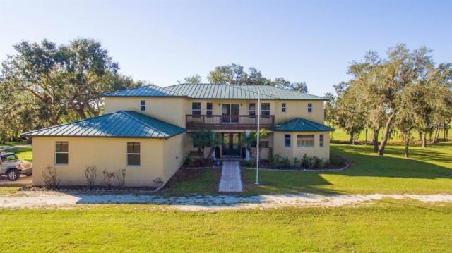4121 Bobay Road, Arcadia, FL 34266 (MLS #C7405616) :: Jeff Borham & Associates at Keller Williams Realty