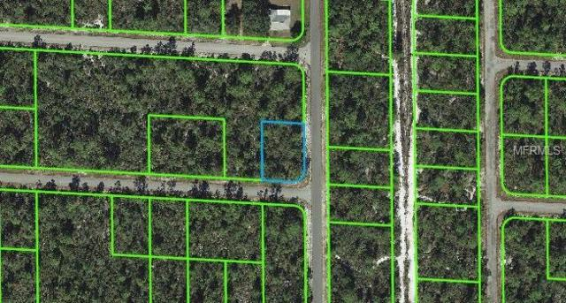 3601 Forrestedge Avenue, Lake Placid, FL 33852 (MLS #C7405640) :: The Duncan Duo Team