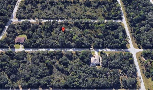 14339 Marlin Avenue, Port Charlotte, FL 33953 (MLS #C7405828) :: Medway Realty