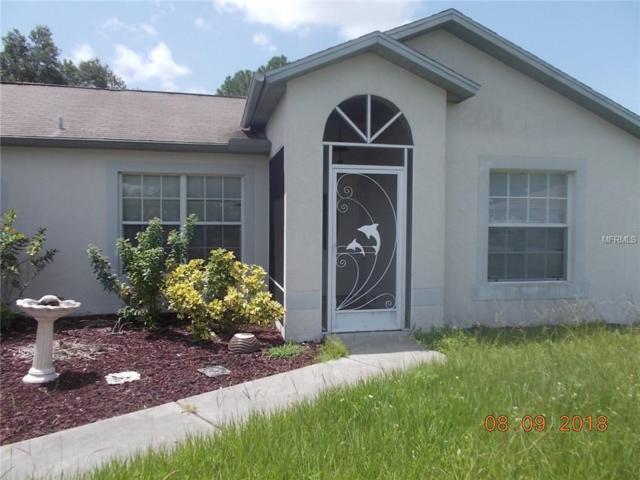 4541 Amanda Avenue, North Port, FL 34286 (MLS #C7405937) :: Medway Realty