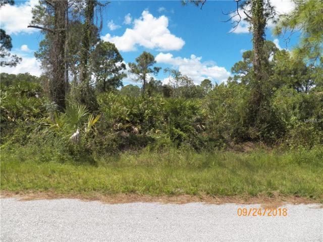 Garnet Street, North Port, FL 34288 (MLS #C7405977) :: Team Pepka