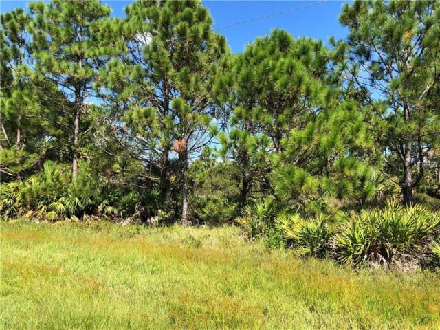26302 Deer Road, Punta Gorda, FL 33955 (MLS #C7406233) :: Mark and Joni Coulter | Better Homes and Gardens