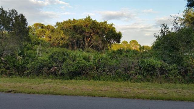 54 Snedeker Street, Port Charlotte, FL 33954 (MLS #C7406316) :: Delgado Home Team at Keller Williams
