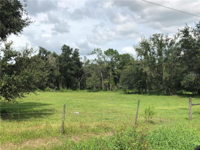 2528 NE Highway 70, Arcadia, FL 34266 (MLS #C7406319) :: The Price Group