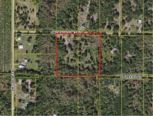 8845 Opossum Trail, Arcadia, FL 34266 (MLS #C7406402) :: The Duncan Duo Team
