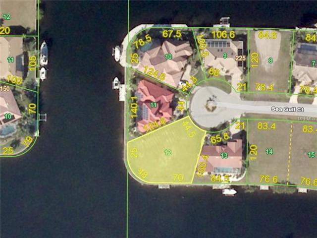 1439 Sea Gull Court, Punta Gorda, FL 33950 (MLS #C7406504) :: The Duncan Duo Team