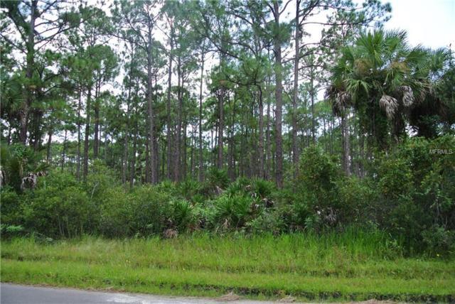 12065 Gahan Avenue, Port Charlotte, FL 33953 (MLS #C7406519) :: Medway Realty