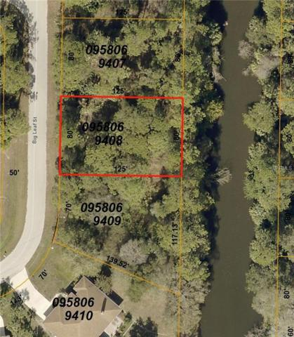Big Leaf Street, North Port, FL 34286 (MLS #C7406652) :: The Duncan Duo Team