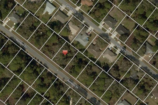 326 Bamboo Drive, Port Charlotte, FL 33954 (MLS #C7406686) :: Cartwright Realty