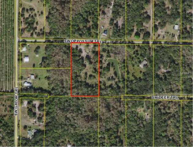 8845 Opossum Trail, Arcadia, FL 34266 (MLS #C7406752) :: Team Buky