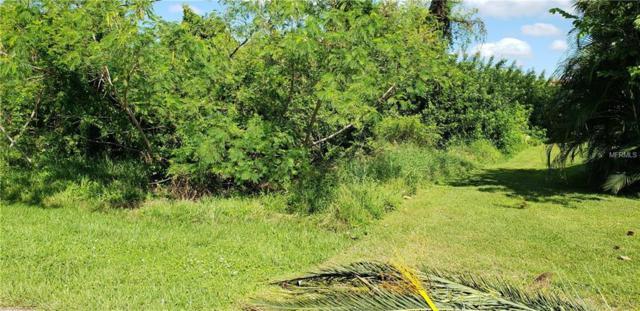 1012 Marlin Drive, Punta Gorda, FL 33950 (MLS #C7406860) :: Griffin Group