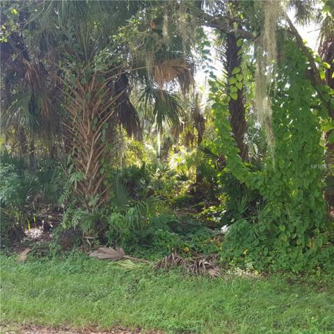 Samoa Avenue, North Port, FL 34287 (MLS #C7406892) :: Mark and Joni Coulter | Better Homes and Gardens