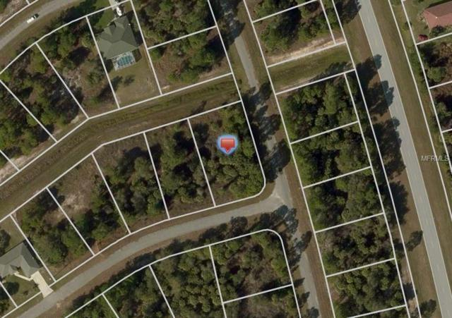 Bannock Circle, North Port, FL 34288 (MLS #C7406972) :: Team Touchstone