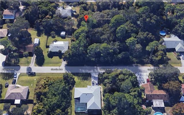 18073 Garvin Avenue, Port Charlotte, FL 33948 (MLS #C7406992) :: Mark and Joni Coulter | Better Homes and Gardens