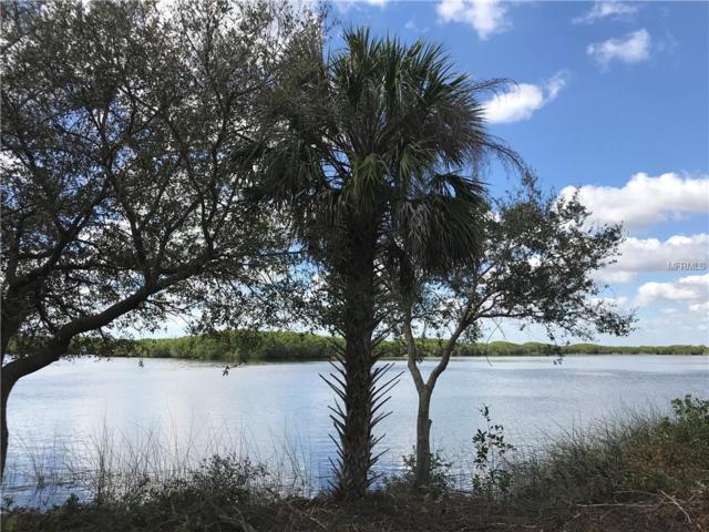 621 Woodstork Lane, Punta Gorda, FL 33982 (MLS #C7407055) :: Mark and Joni Coulter | Better Homes and Gardens