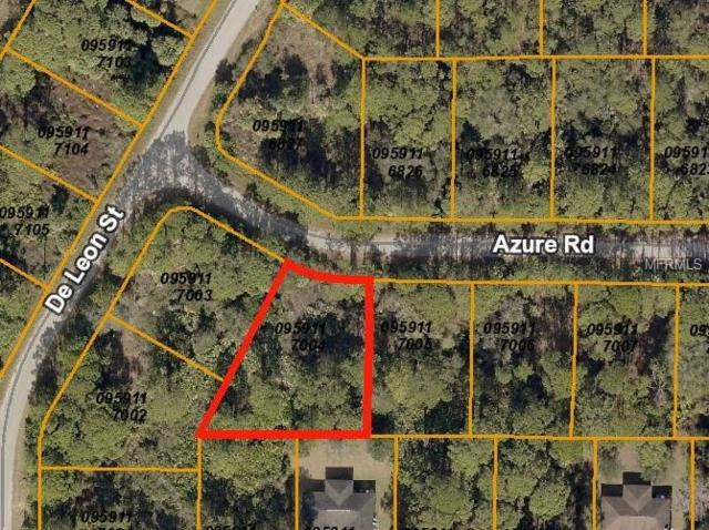 Azure Road, North Port, FL 34286 (MLS #C7407306) :: Mark and Joni Coulter   Better Homes and Gardens