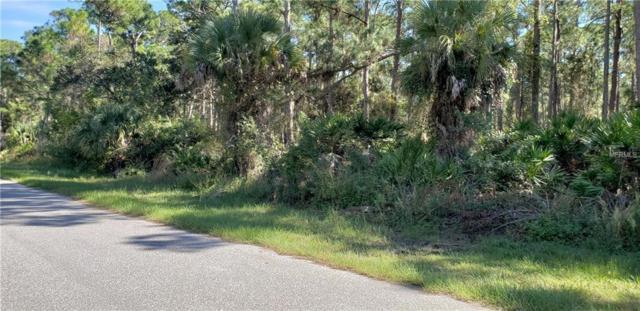 18093 Wakashan Avenue, Port Charlotte, FL 33948 (MLS #C7407324) :: Medway Realty