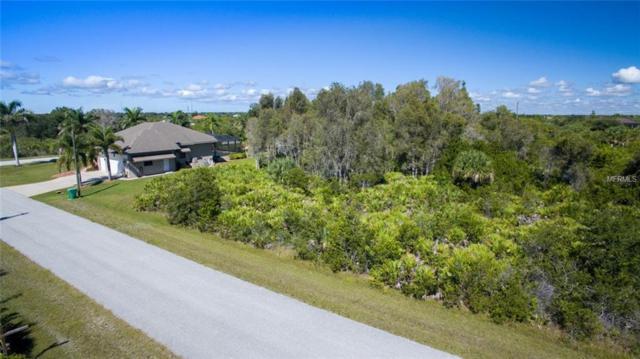 14188 Peekskill Avenue, Port Charlotte, FL 33981 (MLS #C7407422) :: Cartwright Realty