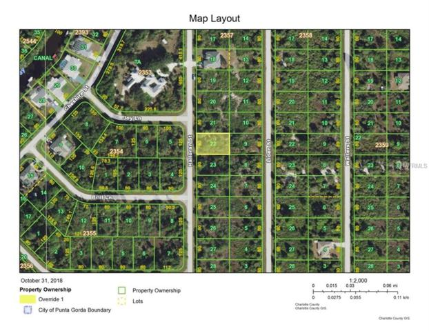 294 Halloran Street, Port Charlotte, FL 33953 (MLS #C7407493) :: Medway Realty