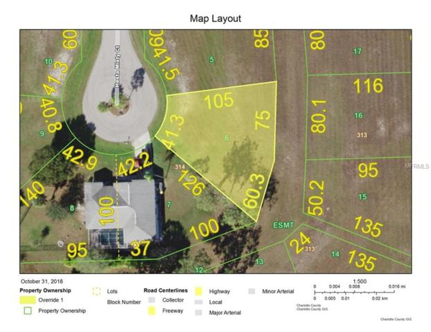 16072 Hesta Misty Court, Punta Gorda, FL 33955 (MLS #C7407541) :: Medway Realty