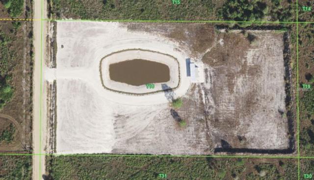 50188 Bermont Road, Punta Gorda, FL 33982 (MLS #C7407588) :: Medway Realty