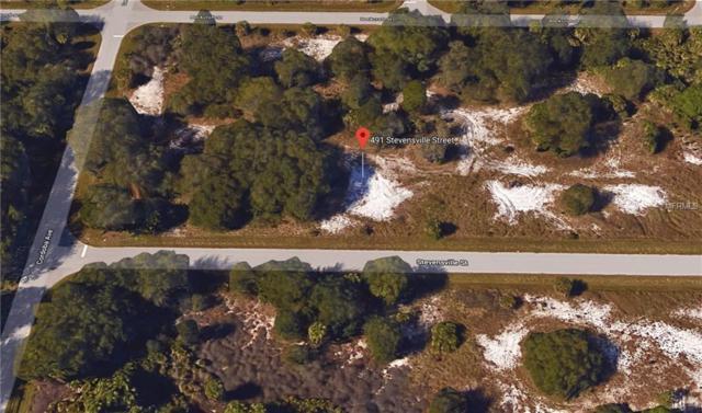 491 Stevensville Street, Port Charlotte, FL 33954 (MLS #C7407621) :: Burwell Real Estate