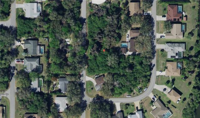 1346 Fireside Street, Port Charlotte, FL 33952 (MLS #C7407636) :: RE/MAX Realtec Group
