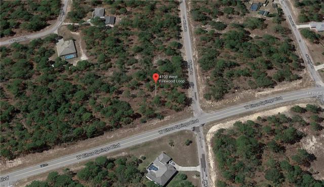 4100 W Firewood Loop, Citrus Springs, FL 34433 (MLS #C7407666) :: The Duncan Duo Team