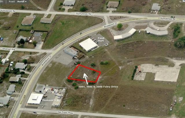 3084 Foley Drive, Punta Gorda, FL 33983 (MLS #C7407681) :: Baird Realty Group