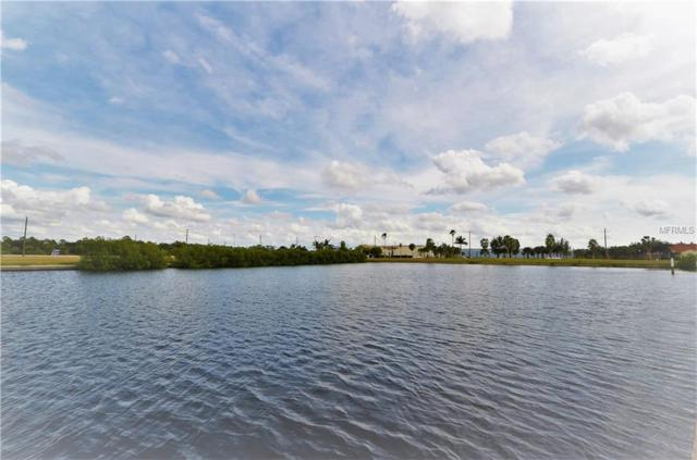 3536 Mondovi Court, Punta Gorda, FL 33950 (MLS #C7407750) :: The Lockhart Team