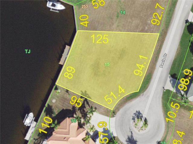 3811 Paola Drive, Punta Gorda, FL 33950 (MLS #C7407890) :: Mark and Joni Coulter | Better Homes and Gardens