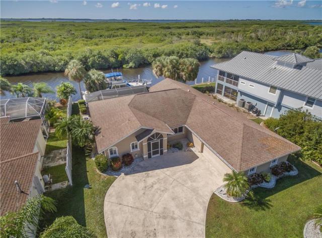 16991 Ohara Drive, Port Charlotte, FL 33948 (MLS #C7407931) :: Medway Realty