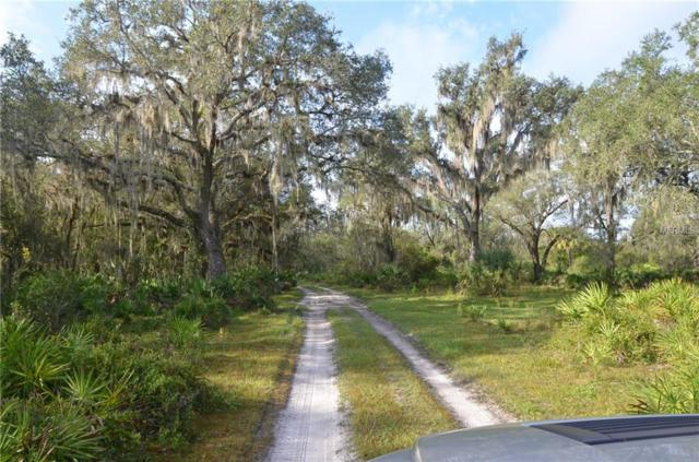 Co Road 760, Arcadia, FL 34266 (MLS #C7407993) :: Cartwright Realty