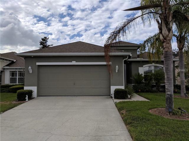 14843 Potterton Circle, Hudson, FL 34667 (MLS #C7408129) :: Premium Properties Real Estate Services