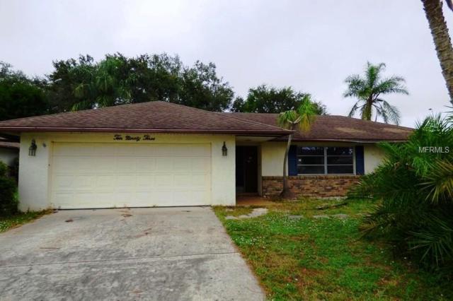 1093 N Cypress Point Drive, Venice, FL 34293 (MLS #C7408176) :: Zarghami Group