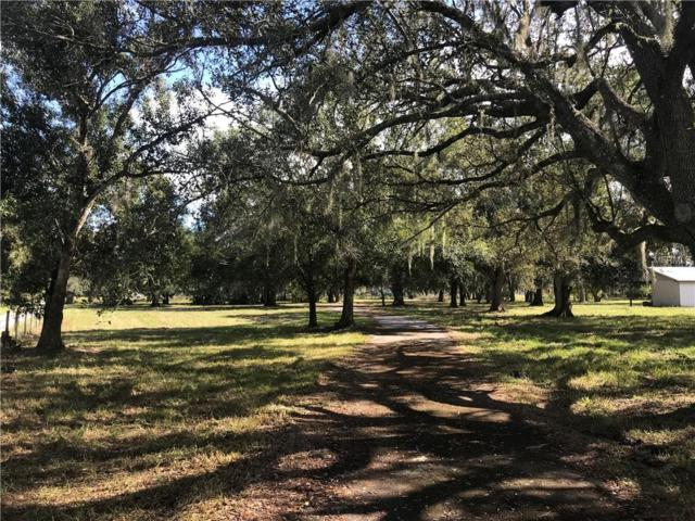 1644 NE Hansel Avenue, Arcadia, FL 34266 (MLS #C7408286) :: Mark and Joni Coulter | Better Homes and Gardens