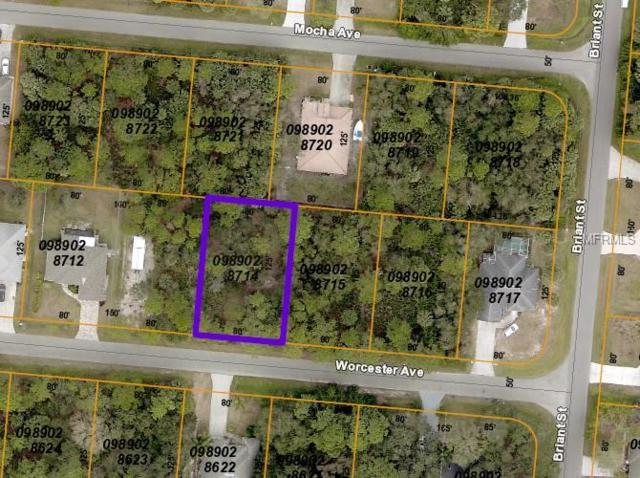 Worcester Avenue, North Port, FL 34287 (MLS #C7408370) :: Mark and Joni Coulter | Better Homes and Gardens