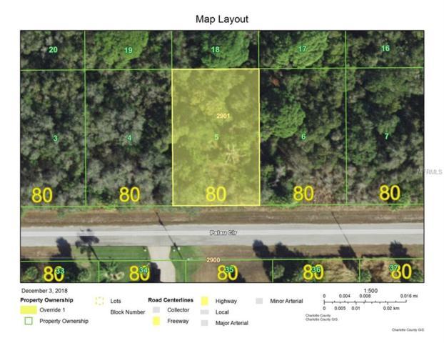 13472 Palau Circle, Port Charlotte, FL 33953 (MLS #C7408804) :: Homepride Realty Services