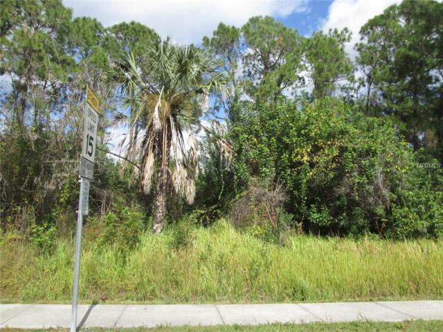 E Geranium Avenue, North Port, FL 34288 (MLS #C7408879) :: Zarghami Group