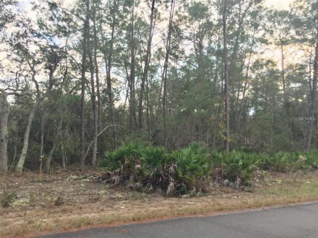 Malauka Pass Drive, Ocklawaha, FL 32179 (MLS #C7408947) :: Griffin Group
