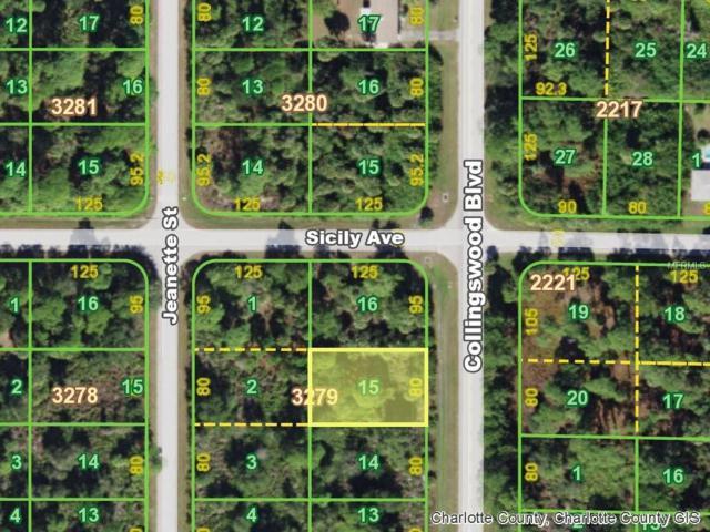 4171 Collingswood Boulevard, Port Charlotte, FL 33948 (MLS #C7409057) :: Premium Properties Real Estate Services