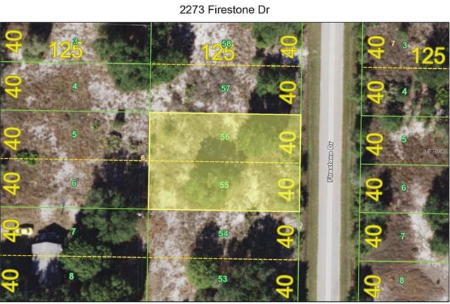 2273 Firestone Drive, Punta Gorda, FL 33983 (MLS #C7409095) :: The Duncan Duo Team