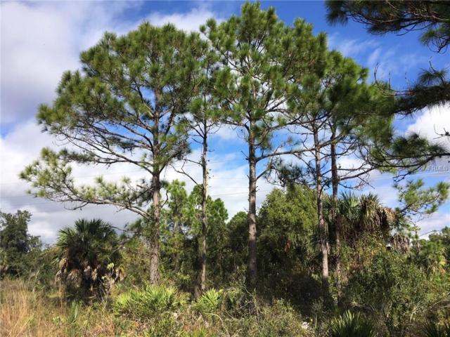 26407 Glaspell Road, Punta Gorda, FL 33955 (MLS #C7409102) :: Medway Realty