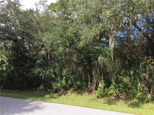 13163 Arizona Avenue, Port Charlotte, FL 33953 (MLS #C7409206) :: Homepride Realty Services