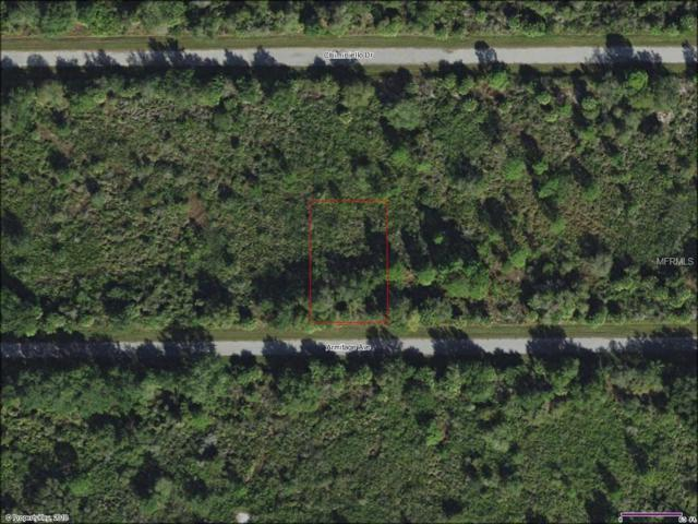 13204 Armitage Avenue, Port Charlotte, FL 33953 (MLS #C7409210) :: Homepride Realty Services